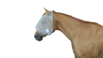 Rodeo Hard Fly Masks with and w/o Ears