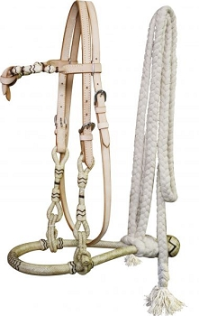 Bosal Headstall and Reins
