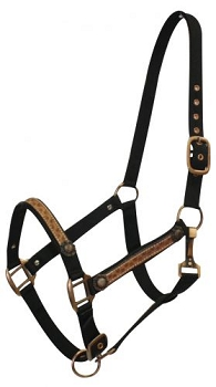 Nylon Halter with Leather Overlay