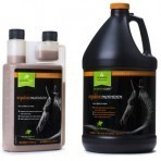 Morinda Care Equine Maintain 32oz