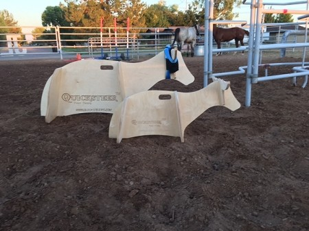 Quicksteer Roping Dummy
