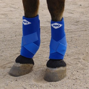 Performance Support Equine Boots